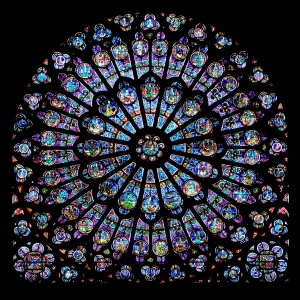 Noth Rose Notre Dame, Paris